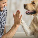 razlozi zasto imati psa