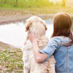 kako odabrati psa